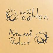 natural products sketch cotton - stock illustration