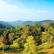 Beautiful Tropic Landscape Stock Photos