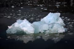 White and blue ice, small icebergs floating in Svalbard, Norway Stock Photos