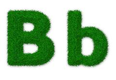 Illustration of capital and lowercase letter B made of grass - stock illustration