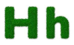 Illustration of capital and lowercase letter H made of grass - stock illustration