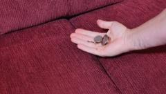 Finding Money in Sofa Cushions Stock Footage