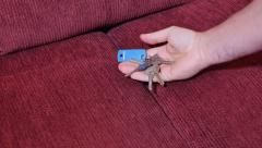 Finding Car Keys in Sofa Cushions Stock Footage