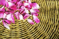 Pink petal rose on wooden woven wicker Stock Photos