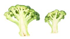 Green broccoli sliced in cutaway isolated Stock Photos
