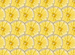 Perfect rows of ripe yellow lemon and grapefruit slices Stock Illustration