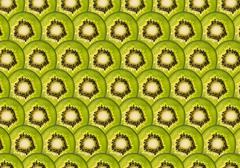 Perfect rows of ripe green kiwi slices Stock Illustration