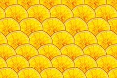 perfect rows of ripe orange slices - stock illustration