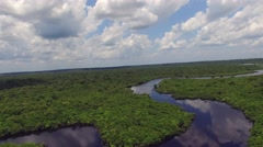 Aerial Shot of Amazon rainforest in Brazil, South America Stock Footage