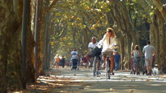 People walks along park during summer, surrounded by trees. - stock footage