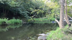 Man play swim ring at stream or canal in forest Stock Footage