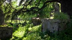 Etruscan necropolis Stock Footage