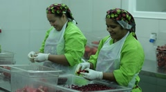 Fruits Factory workers, Peeling pomegranates seeds - stock footage