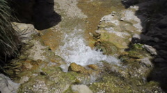 Water stream river in desert oasis, Ein Gedi, Israel - stock footage