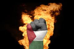 fire fist with the national flag of palestine - stock photo
