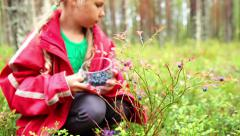 Young girl collecting berries, blueberry, from the bush in glass cup, forest Stock Footage