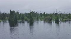 Trees in the water at Banado La Estrella, North Argentina Stock Footage