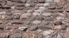 Tel Dan archeological park DAN, ISRAEL - stock footage