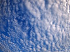 Dense and stratus clouds against the blue sky Stock Photos