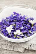 Edible violets in bowl Stock Photos