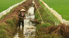 Farmer irrigating water into rice fields in Asia Stock Footage