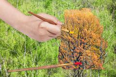 Paintbrush paints yellow autumn oak in green woods Stock Photos