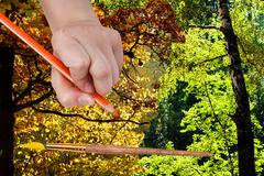 pencil draws autumn leaves in green summer forest - stock photo