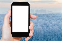 smartphone with cut out screen and frozen forest - stock photo