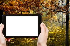 Stock Photo of tablet pc with cut out screen and autumn forest