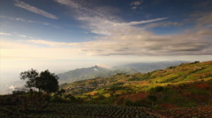 Beautiful mountain scenery and many green cabbages in the agriculture fields at Stock Footage