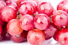 bunch of red soak grape on white background - stock photo