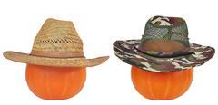 Halloween Pumpkins in Hats - stock photo
