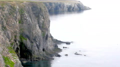220 thousands of guillemots and 50 thousand Kittiwakes cliffs of  Novaya Zemlya Stock Footage