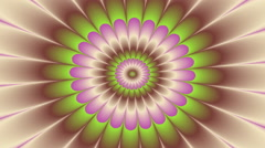 Abstract flower - decorative video Stock Footage