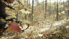 Mountain biker passes frame in the fall colored forest Stock Footage