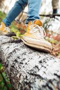 Move on fallen tree - stock photo