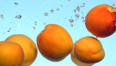 Apricot. Fresh and ripe organic apricots falling in water. Stock Footage