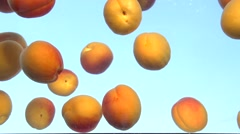 Apricot. Fresh and ripe organic apricots falling in water. - stock footage