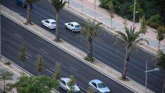 Palm trees road - stock footage