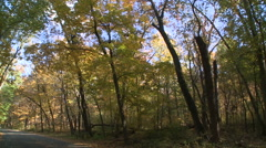 Pan of Cars Driving Through Southern Forest with Early Fall Colors - stock footage
