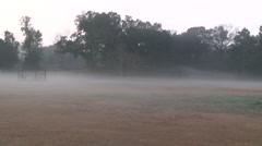Classic Ground Fog Drifitng over Alabama Field at Dawn Stock Footage