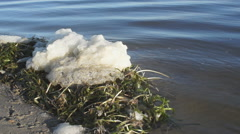 Lake Shore Foam Close Stock Footage