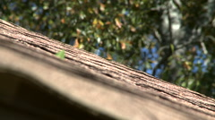 Shimmering Heat Waves Rippling Above Roof on Hot Summer Day Stock Footage