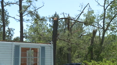 Roof, Treetops - Gone With the Wind Stock Footage