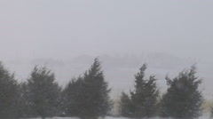 Low Visibility Due to Blowing Snow in Prairie Blizzard Stock Footage
