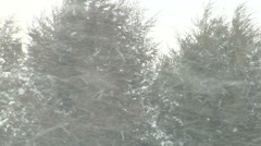 Large Snowflakes Blowing in Rural Blizzard Winds Stock Footage