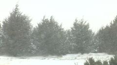 Wind Blowing Snow Sideways in Plains Blizzard Stock Footage