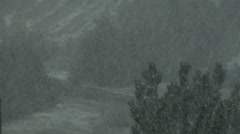 Heavy Wet Snow Begins to Fall in Colorado Forest Stock Footage