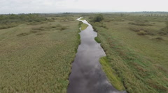 Pine River Straight in Wetland Aerial Stock Footage