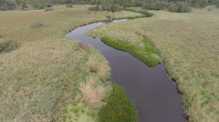 Pine River Aerial  Bends - stock footage